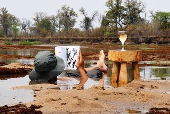 African safaris in Zambia - cooling off in the  River.jpg