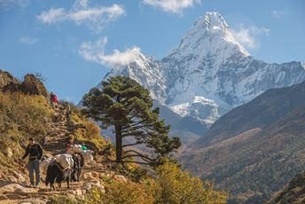 Nepal trekking in Everest region - Dwarikas.jpg