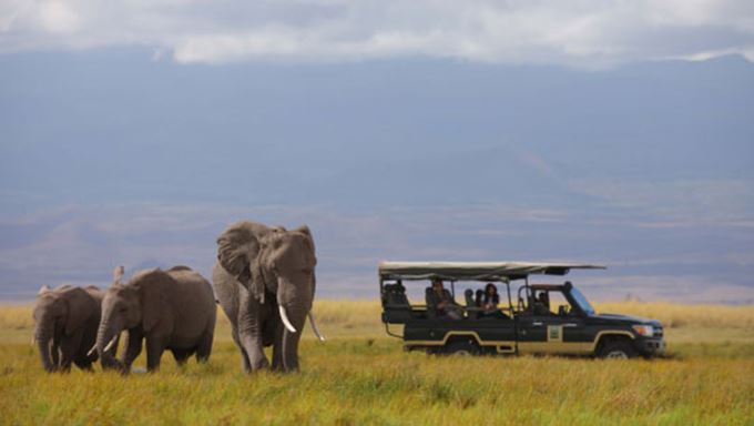 48-kenya-1-1 Magnificent wild life regions of masai mara lead.jpg