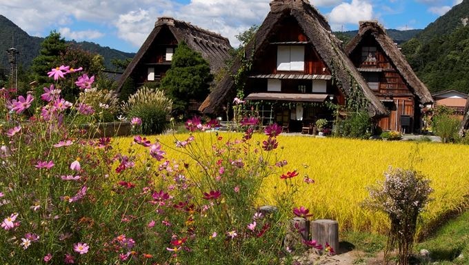 Japan Shirakawago farm houses JNTO.jpg