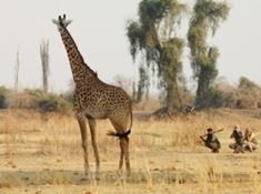 Highlights - Africa - Zambia - Authentic walking safaris 1.jpg
