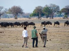 236-zimbabwe-1-1 walking safaris lead.jpg