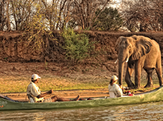 231-zimbabwe-2-1 wildlife canoeing background.jpg