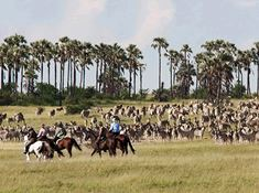 4-horse-riding-safari-in-tanzania-1-1 lead.jpg