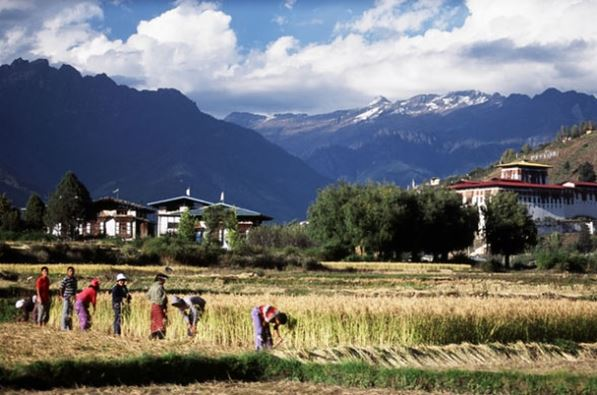 bhutan accommodation lead.jpg