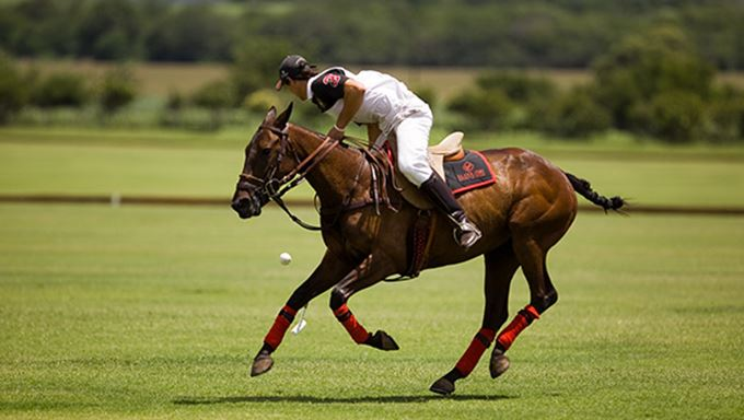 Play polo in Argentina lead.jpg