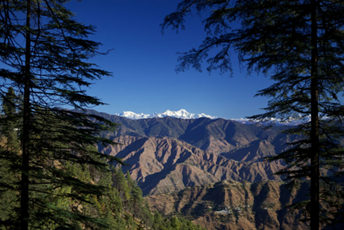 A journey through the foothills of the Himalayas.jpg