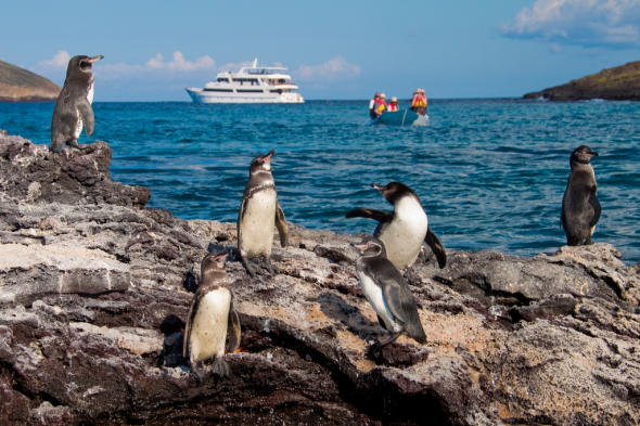 Private Galapagos Yacht Holidays.jpg