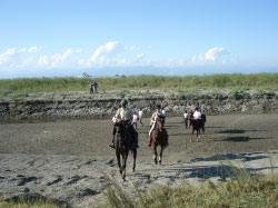 Riding safaris in Rajasthan.jpg