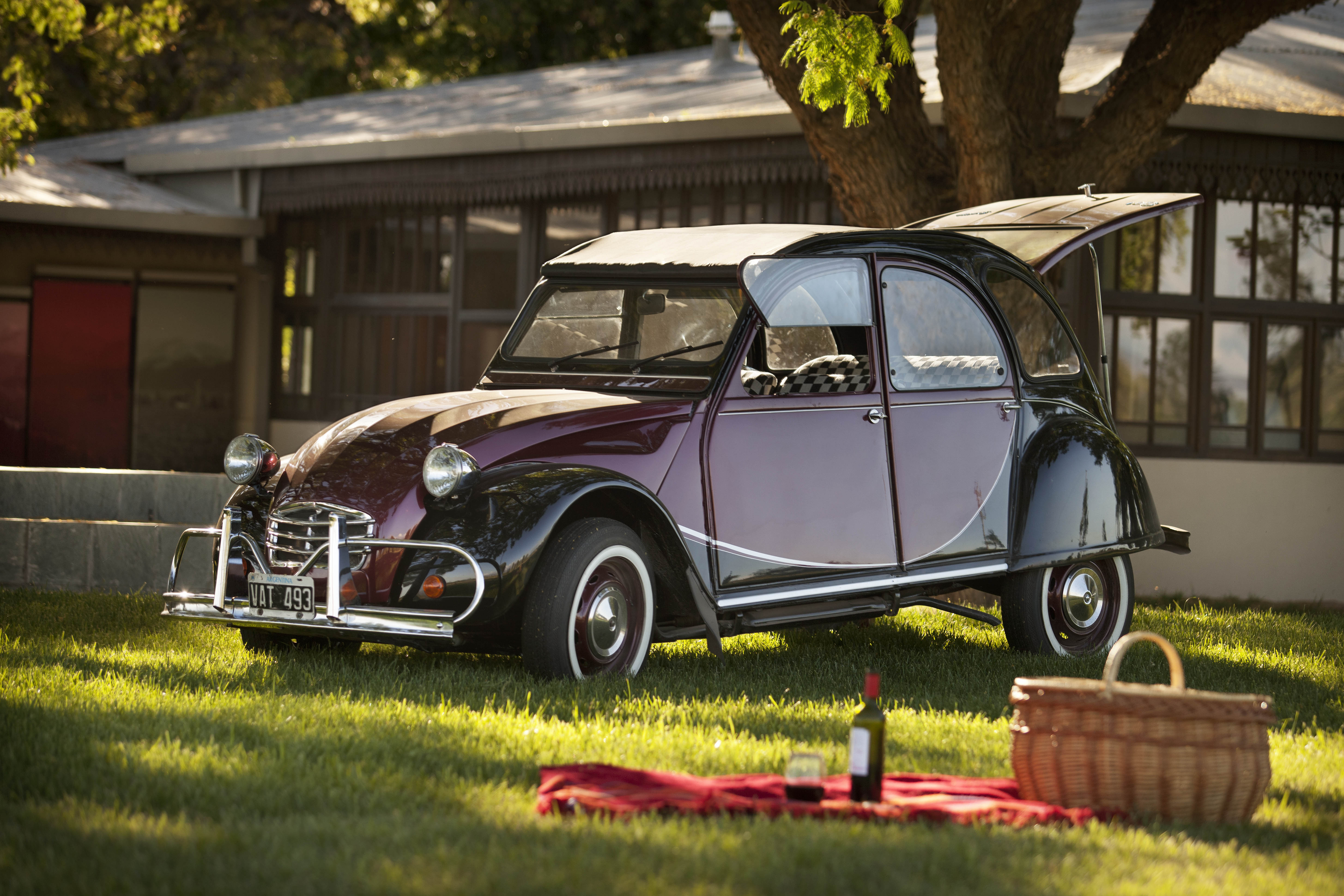 Mendoza - 2CV Self Drive with Slowcar.jpg