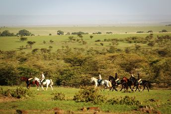 Africa - Kenya - Masai Mara - Riding - Safari.jpg
