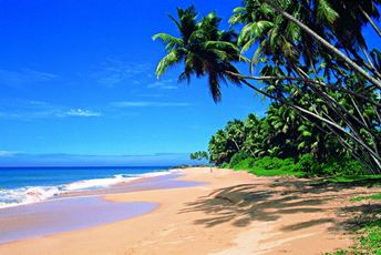 Asia - Sri Lanka - Sri Lanka Tourism - beach and palm trees.jpg