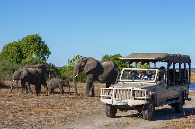 Botswana - Chobe-Game-Lodge-families safaris.jpg