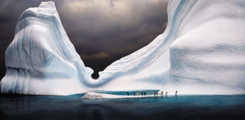 Polar Regions - Antarctica - Antarctic Continent - Penguins on Iceberg.jpg