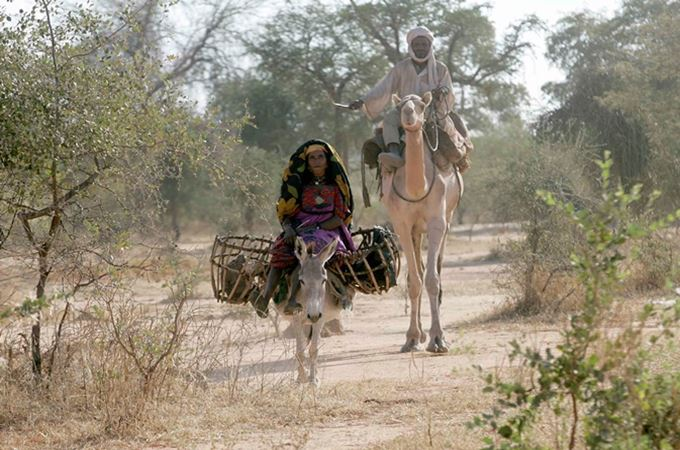A women on a donkey and a man on a camel making their way along a road side in Goz Beida, Chad, Africa