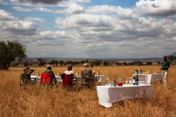 Tanzania bush lunch.jpg