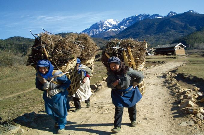 China - Naxi Women carrying crops in traditional baskets in the Himalayas