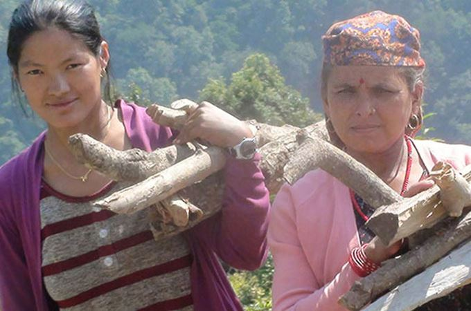 Parents carrying wood to make the Tiffin in Nepal
