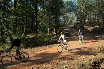 Central India Cycling Safari Wildlife Sanctuary h.jpg