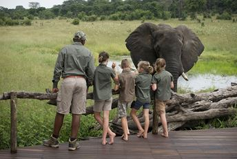 Zim family safaris - children and guide with elephant - ABC Somalisa.jpg