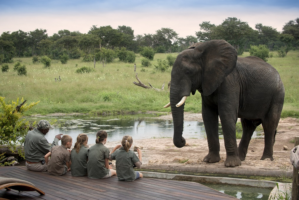Zim family safaris - children and guide watching elephant - ABC Somalisa.jpg