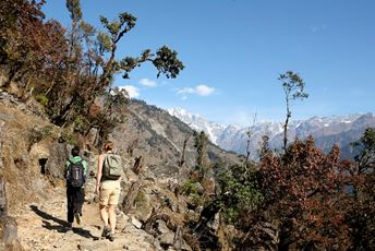 India Walking Holiday - Walking at Leti Shakti.jpg